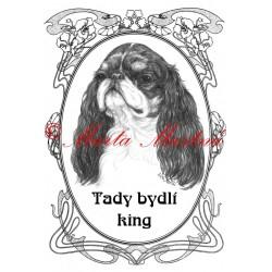 Tabulka king Charles španěl