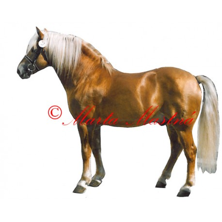 Samolepka kůň hafling Simel