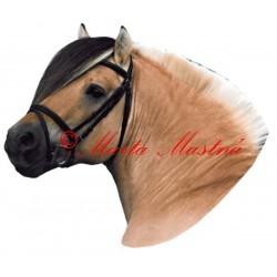 Samolepka fjordský, kůň, koně