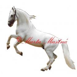 Samolepka kladrubský bělouš, kůň, koně