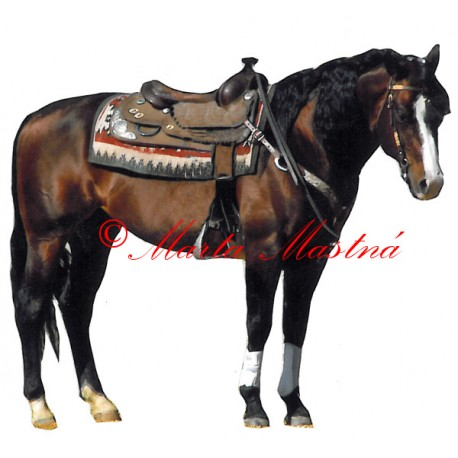 Samolepka quarter horse, western