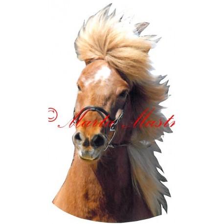 Samolepka islandský pony