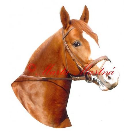 Samolepka kůň Kinský Mailisko