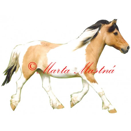 Samolepka hucul, pony