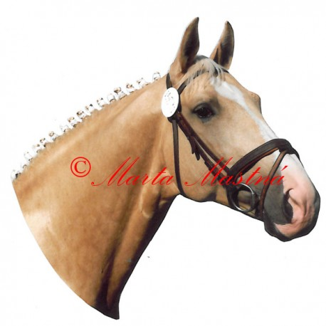 Samolepka kůň Kinský Polemik