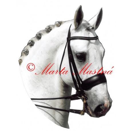 Samolepka holštýnský kůň