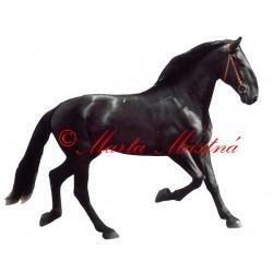 Samolepka kladrubský vraník, kůň, koně