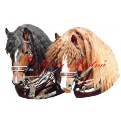 Samolepka českomoravský belgik Baluf a Agar, koně
