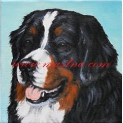 Obraz na plátně bernský salašnický pes