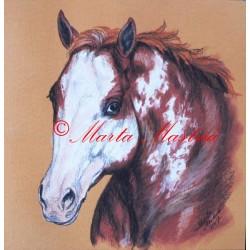 Obraz paint horse