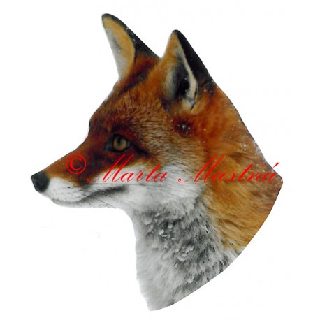 Samolepka liška