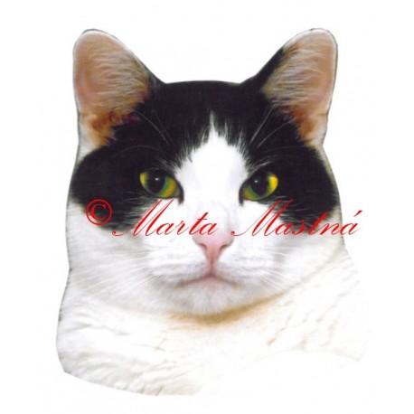 Samolepka kočka