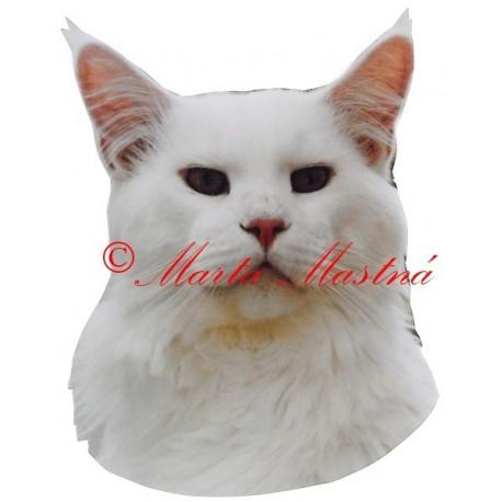 Samolepka kočka mainská mývalí