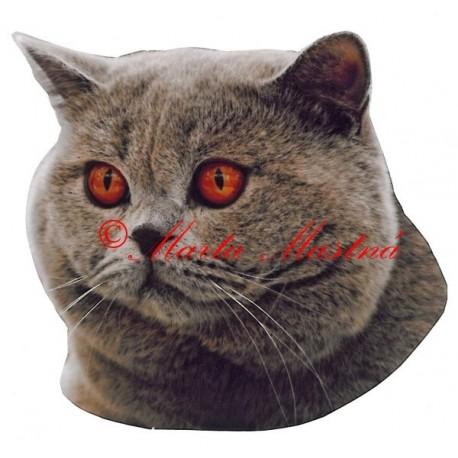 Samolepka kočka britská modrá