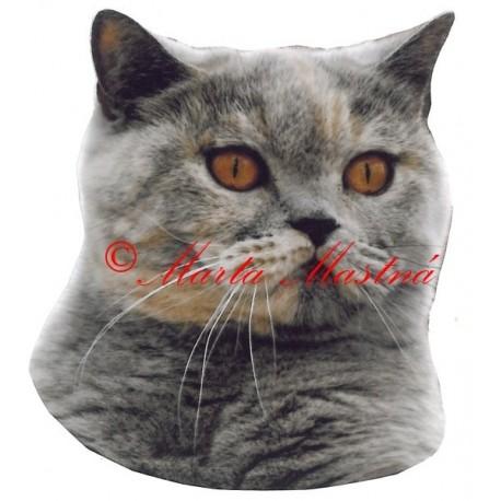 Samolepka kočka britská modrokrémová