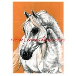 Obraz arabský kůň, pastel - tisk