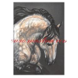 Autorský tisk kůň plavák