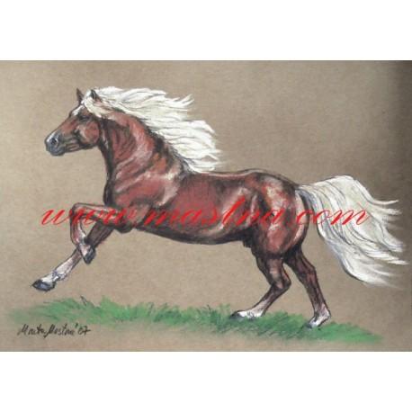 Autorský tisk kůň hafling