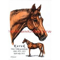 Obraz anglický plnokrevník Korok, koně, perokresba - tisk