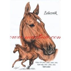 Obraz anglický plnokrevník Železník, koně, perokresba - tisk