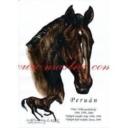 Obraz anglický plnokrevník Peruán, koně, perokresba - tisk