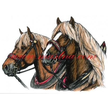 Autorský tisk kůň chladnokrevní hřebci, zápřež