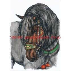 Obraz norický kůň, koně, perokresba - tisk