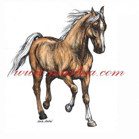 Autorský tisk kůň isabela, Kinský