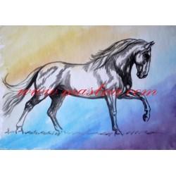 Obraz kladrubský kůň, koně, akvarel - tisk