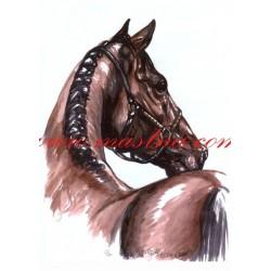 Obraz kůň, koně, akvarel - tisk