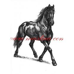 Obraz fríský kůň, koně, tužka - tisk