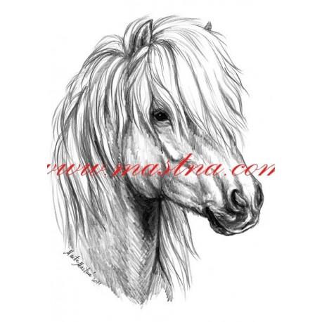 Autorský tisk shetlandský pony