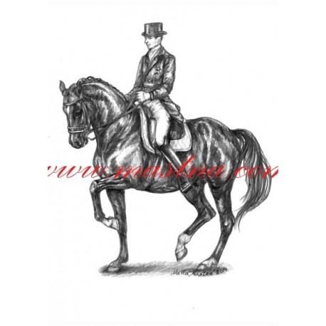 Autorský tisk kůň drezura