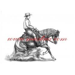 Obraz quarter horse, slide stop, western, tužka - tisk