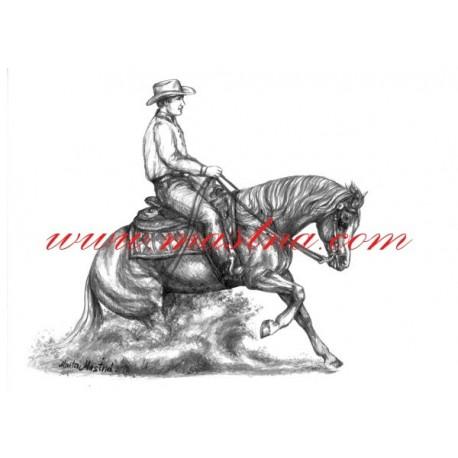 Autorský tisk quarter horse, slide stop, western