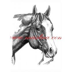 Autorský tisk paint horse, western