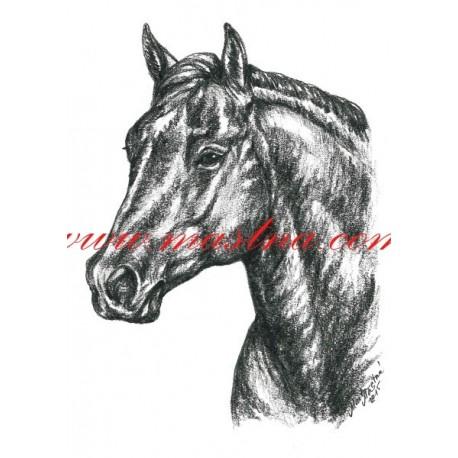 Autorský tisk quarter horse, western