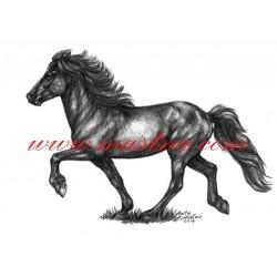 Autorský tisk islandský pony, tölt