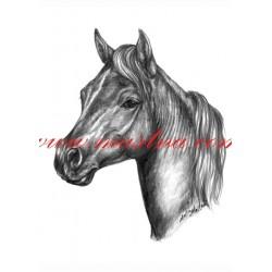 Autorský tisk minihorse, pony