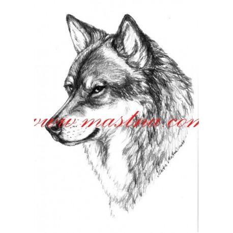 Autorský tisk vlk