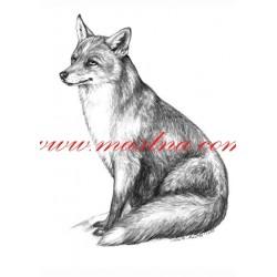 Obraz liška, myslivost, tužka - tisk
