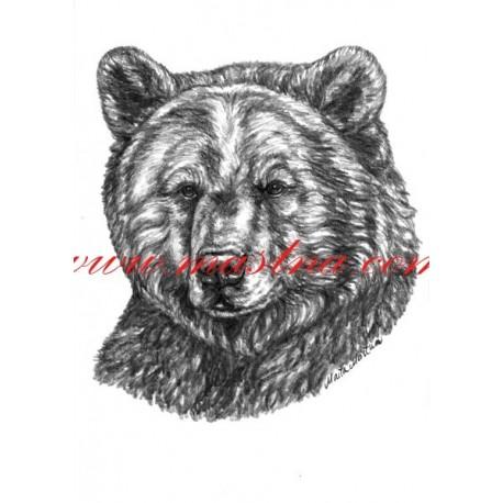 Autorský tisk medvěd