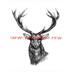 Obraz jelen, myslivost, tužka - tisk
