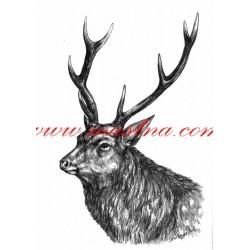 Obraz jelen sika, myslivost, tužka - tisk
