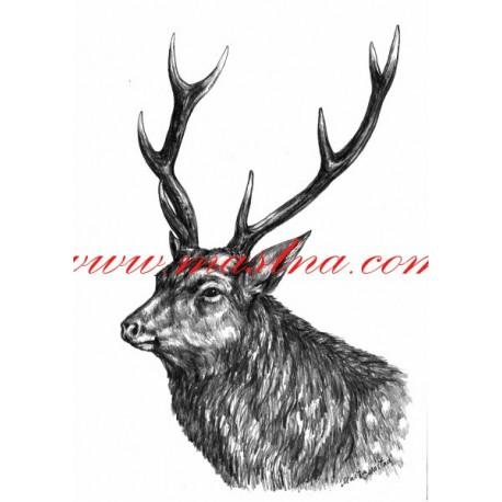 Autorský tisk jelen sika
