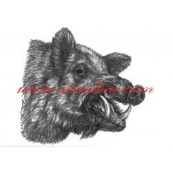 Obraz divočák, prase divoké, černá zvěř, myslivost, tužka - tisk