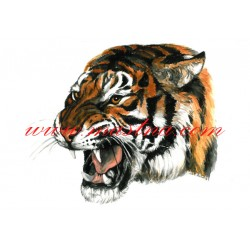 Autorský tisk tygr