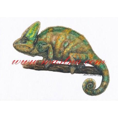 Autorský tisk chameleon