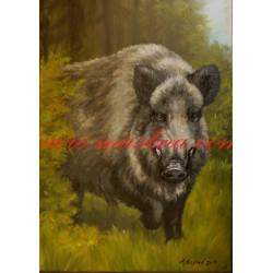 Obraz divočák, prase divoké, černá zvěř, myslivost, olejomalba - tisk