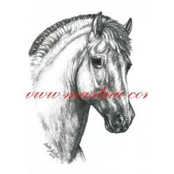 Autorský tisk fjordský kůň